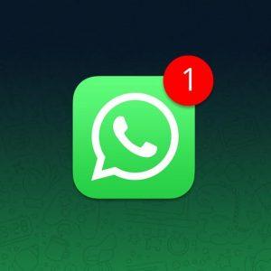 Accengage_WhatsApp_Notifications